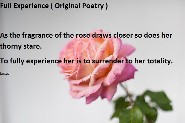 Full experience ( Original Poem)