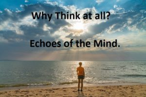 Why Think at all? Echoes of the mind