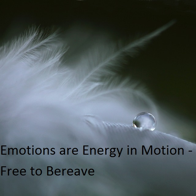 Emotions are Energy in Motion – Free to Bereave