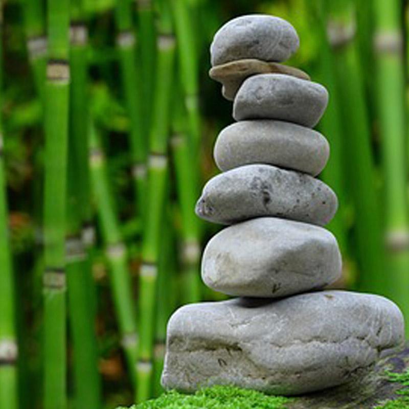 Meditations Inner Magnet Lila Lizno