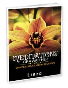 Meditations of a Watcher