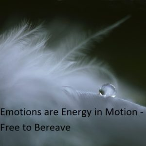 Emotions are a free ride to places we have never been